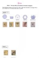 "O Malaiische Staaten - Straits Settlements - Post In Bangkok: 1882, ""B"" For Bangkok Overprinted Seven - Straits Settlements"