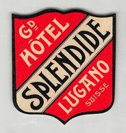 "07324 ""HOTEL HOTEL SPLENDIDE - LUGANO - SVIZZERA"" ETICHETTA ORIGINALE - ORIGINAL LABEL - - Adesivi Di Alberghi"