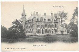 CPA PK   WOMMELGHEM  CHATEAU DE SELSAETE - België