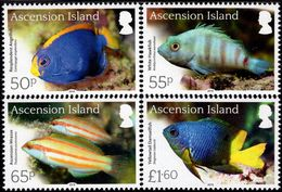 Ascension Island - 2016 - Endemic Fish - Mint Stamp Set - Ascension (Ile De L')