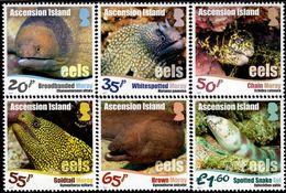 Ascension Island - 2017 - Ascension Eels - Mint Stamp Set - Ascension (Ile De L')