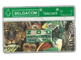 Belgique Belgacom Zoo Antwerpen 1843 - 1993 - Belgium