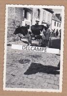 PLESTIN LES GRÈVES ? ( à Vérifier ) Années 1950 - Photo Originale Prise Un Jour De Marché ( Côtes D'Armor ) - Lieux