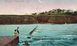 Fishing For Carpon - Gatun, C. 3 - Panama