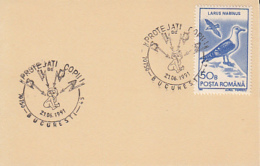 68700- PROTECT THE CHILDRENS SPECIAL POSTMARKS ON CARDBOARD, SEAGULL STAMP, 1991, ROMANIA - 1948-.... Républiques