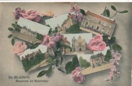 CPA 49 De BLAISON Recevez Ce Souvenir Multi-vues Colorisée Blaison Gohier - France