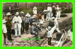 BERMUDA - BERMUDA FISHERMAN - ANIMATED -  PUB. BY YANKEE STORE & PHOENIX DRUG STORE - TRAVEL IN IN 1939 - - Bermudes