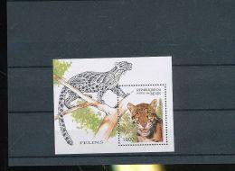 1996 Benin  - Wild Cats  / Rauben Und Wild Kätzen  - MS - MI B 19 - Nebelparder (HJ16) - Big Cats (cats Of Prey)