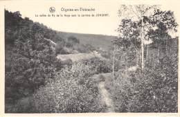 OIGNIES-en-THIERACHE - La Vallée Du Ry De La Noye Vers La Carrière De JONSART. - Viroinval