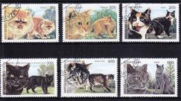 Kongo (Brazzaville) 1677-1682 Gestempelt Katzen, Congo #RE162 - Congo - Brazzaville