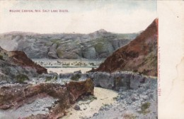 Nevada Mojave Canyon Salt Lake Route