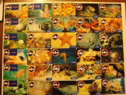 41 Remote Phonecards From Venezuela - Un1ca - Undersea Life - Fishes - Venezuela