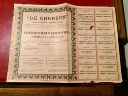 Sté  Des MINES  &  CHARBONNAGES  < LE  CHARBON  > ---------Action - Miniere