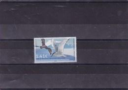 TAAF : Oiseau Labbé De Mac Cormick : Y&T : ** - Terres Australes Et Antarctiques Françaises (TAAF)