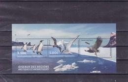 TAAF : Oiseaux Des Régions Artiques Et Antartiques : Y&T : BF  ** - Blocchi & Foglietti