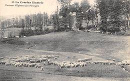 Egletons       19    Pâturage Aux Environs. Moutons         (voir Scan) - Egletons