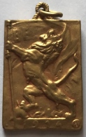Médaille. Militaria. Ixelles à Ses Glorieux Enfants 1914 X1 918.  20x30 Mm - Army & War