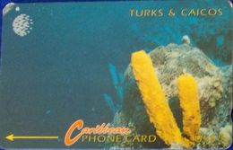 TURKS & CAICOS Phone Card  è Come Da Foto - Turks And Caicos Islands