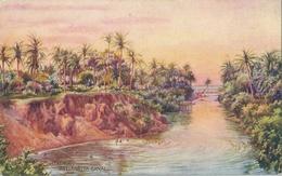 COLOMBO Wellawatta Canal - Sri Lanka (Ceylon)