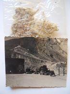 Photo De Voitures Anciennes Au Col Du Galibier Avec Edelweiss - Automobile
