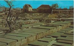 Curacao - Old Jewisch Cemetery - 47017-B - Curaçao