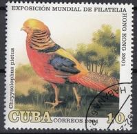 Cuba 2001 Sc. 4124 Uccelli Birds - Fagiano Dorato  Chrysolophus Pictus Nuovo CTO - Galline & Gallinaceo