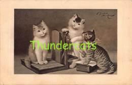 CPA ILLUSTRATEUR SPERLICH  CHAT CHATS   ARTIST SIGNED CARD SPERLICH CAT CATS - Gatti
