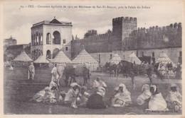 FEZ / CONCOURS AGRICOLE DE 1915 AU MECHOUAR DE BAB EL BOUZAT / PRES DU PALAIS DU SULTAN - Fez