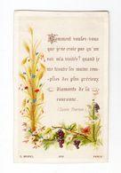 Citation De Sainte Thérèse, Fleurs Et Vigne, éd. C. Morel N° 888 - Devotion Images