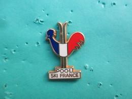 Pins Arthus Bertrand, Coq Sportif Tricolore, Pool Ski France - Arthus Bertrand