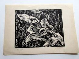 Ex-libris Tillia HERRY 14,7 X 10,5 Cm - Ex-libris