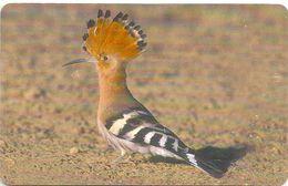 Oman - Chip - Heron Eating Fish - Birds - 05.2002, 400.000ex, Used - Oman