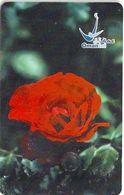 Oman - Chip - Red Rose - 03.2003, 500.000ex, Used - Oman
