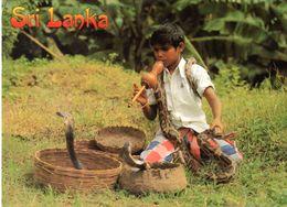 SRI LANKA : Snake Charmer - Sri Lanka (Ceylon)