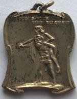 Médaille. Caisse Prévoyance Mutuelle 1852 - 1902. 50eme Anniversaire De La Fraternelle Belge. Aidons-nous Mutuellement. - Professionals / Firms