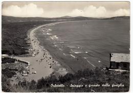 ORBETELLO - SPIAGGIA E FORESTA DELLA FENIGLIA - GROSSETO - Grosseto