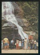 Brasil. RJ - Río Janeiro. *Floresta Da Tijuca* Circulada 1969. - Brasil