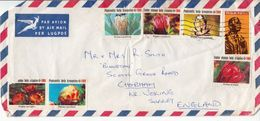 Postal History Cover: RSA Cover With 6 Cactusses Labels - Cactusses