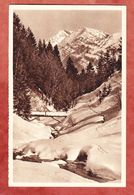 P 254 Winterhilfswerk, Abb: Rindalphorn, Ungebraucht (45704) - Entiers Postaux