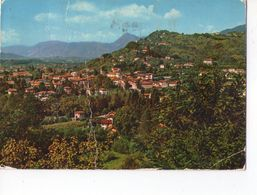 U1618 Cartolina Del Friuli Venezia Giulia - TARCENTO (UDINE) PANORAMA _ CIRCOLATA - Italia