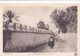 Taroudant (Maroc) - Une Rue - Morocco