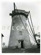 EVERGEM - Vierlinden (O.Vl.) - Molen/moulin - Echte Foto 18x24 Cm Van De Verdwenen Brielmolen Omstreeks 1940 (romp) - Lieux