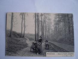 Bruxelles - Schaerbeek : Dans La Vallée Josaphat ( Attelage De Chien ) //ca 1900 Ed LL - Schaerbeek - Schaarbeek