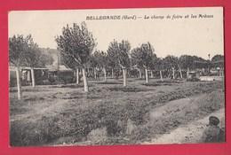 30 BELLEGARDE Champ De Foire Et Arènes - Bellegarde