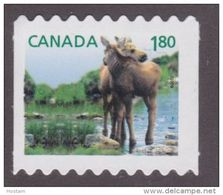 CANADA, 2012,  # 2509ii, BABY WILDLIFE: Moose  MNH  From Quartely Pack - Coil Stamps