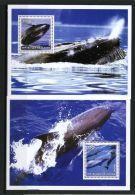 Guinea, 2002, Whale, Animals, Fauna, MNH Sheets - Guinée (1958-...)