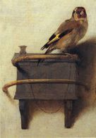 Paintings Carel Fabritius. Nederlands.Birds. - Paintings