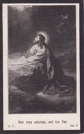 Doodsprentje (7587) Cruyshautem Kruishoutem - BOHYN 1884 - 1915 - Devotion Images