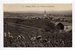 - CPA FLEURIE (69) - Les Vendanges En Beaujolais 1932 - Editions CATALA N° 17 - - Autres Communes