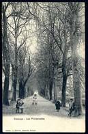 CAROUGE - Les Promenades - Viaggiata 1906 - Rif. 00157 - GE Genève